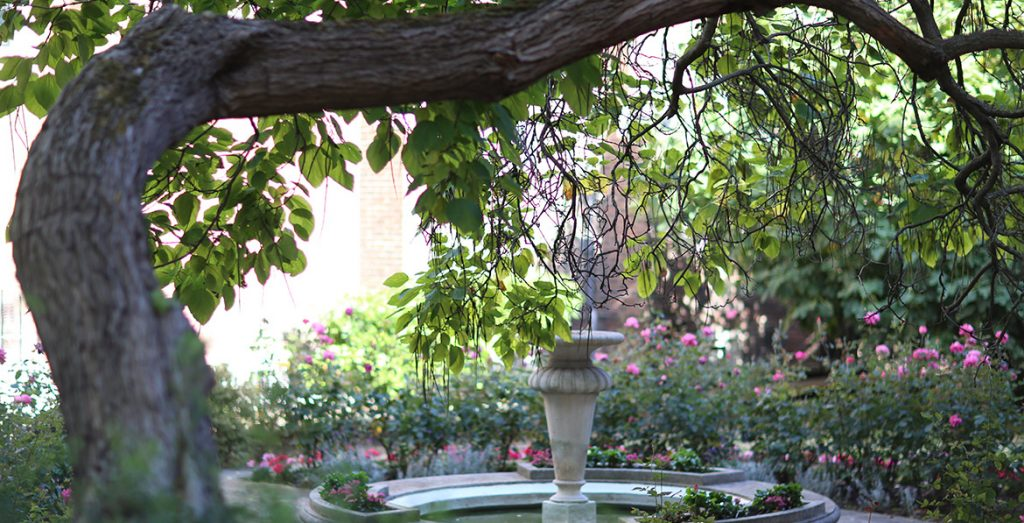 Private Psychotherapy London Location based in Holborn and Southwark Giovanni del Vecchio - image of grounds